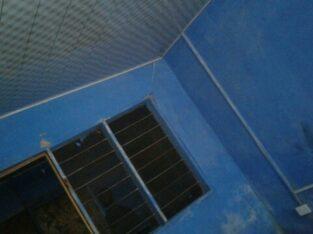 1 room+porch@Dome
