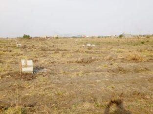 Titled half plots at Community 25