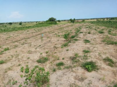 Affordable land at Dawa