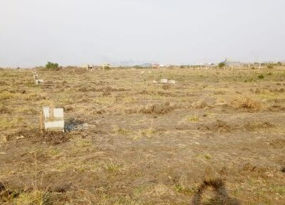 ESTATE HALF PLOTS AT COMM. 25