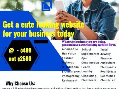 Get a cute looking website for your business today.