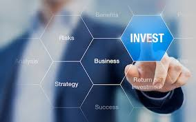 Am an investor and I am looking for a partner